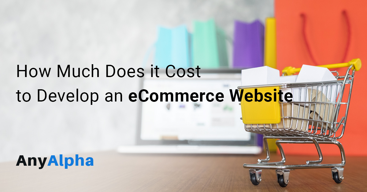 How Much Does it Cost to Develop an eCommerce Website - Anyalpha